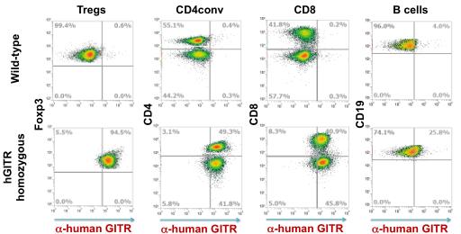 図1. hGITRは免疫細胞で誘導されて発現する | サイヤジェン
