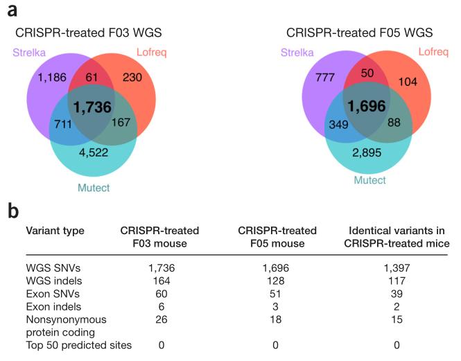 CRISPR-Cas9基因编辑