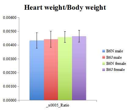 心脏和其他器官重量测量2