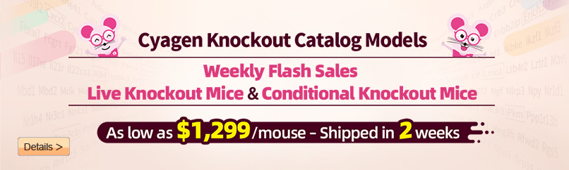 Live KO&cKO Mice Shipped in Just 2 Weeks, Only $1299