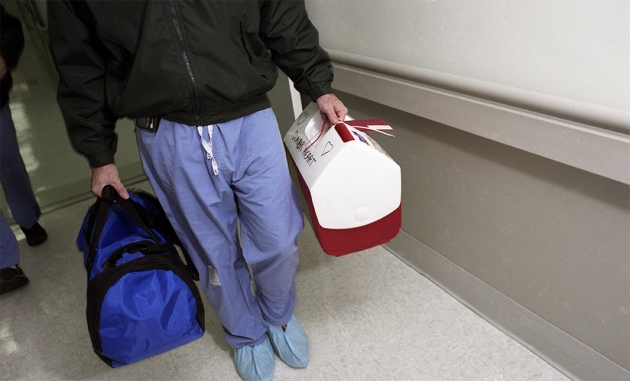 研究人员正在收集冷冻人体标本