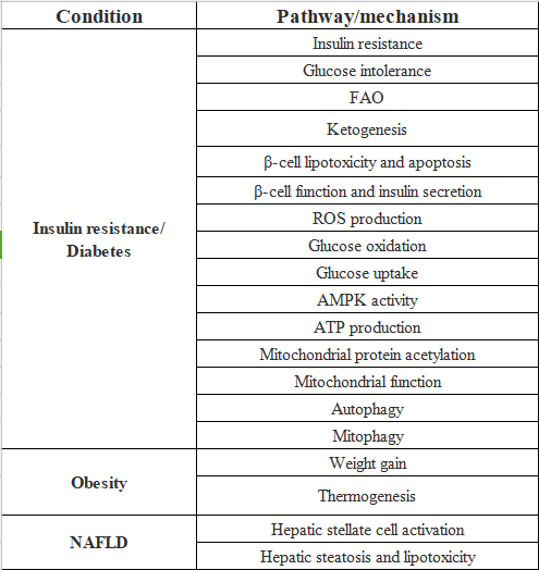 表1. SIRT3調節の代謝障害や関連経路への影響|サイヤジェン