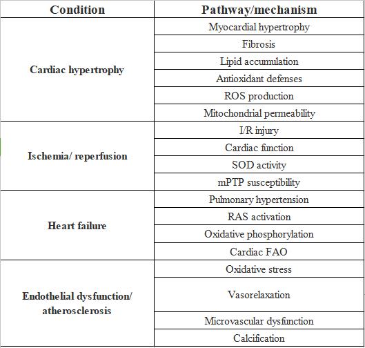 表2. SIRT3調節の心血管疾患と関連ルートへの影響|サイヤジェン