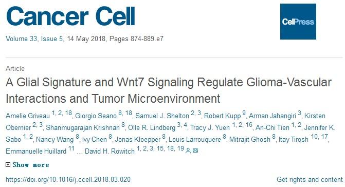 发表在《Cancer Cell》的新文章:《神经胶质信号和Wnt7信号调节神经胶质瘤-血管的相互作用和肿瘤微环境》