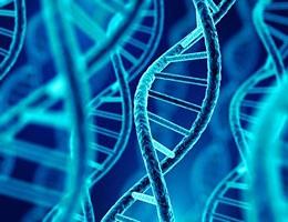 """""""CRISPR/Cas9基因编辑"""""""