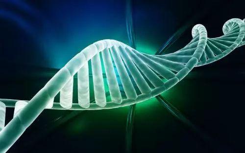 """CRISPR基因编辑""/"