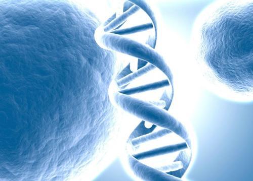 """""""基因检测""""/"""