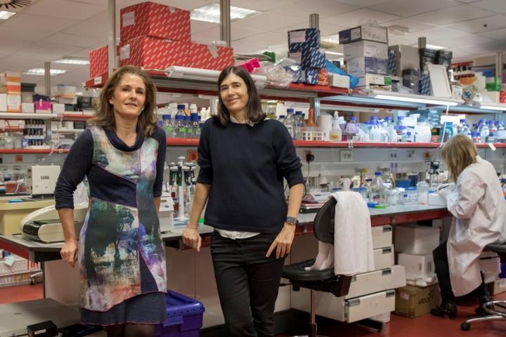 Paula Martínez(左)和 Maria A. Blasco(右)