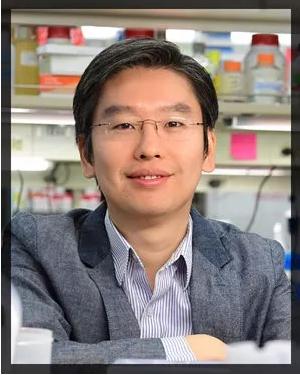 本研究的主要负责人Harris Wang教授