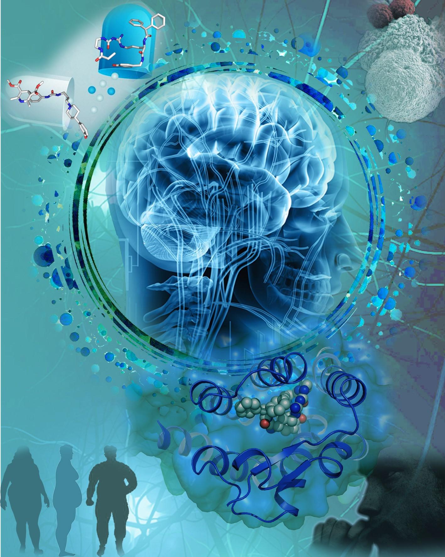 神经肽Y受体Y1R重要结构