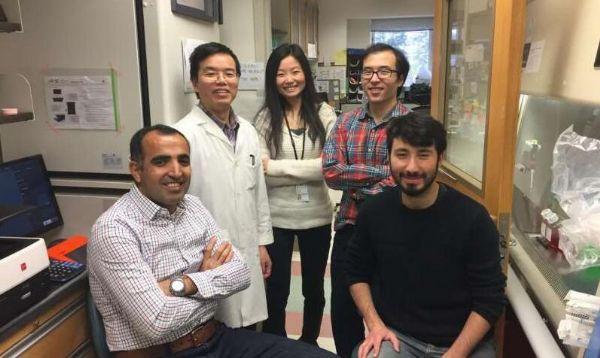 CRISPR-Cas9技术