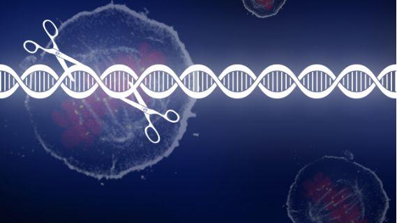 CRISPR/Cas- 9