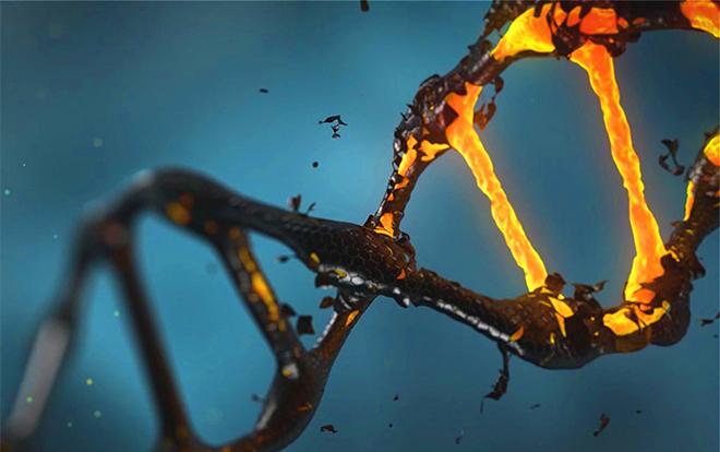 全基因测序