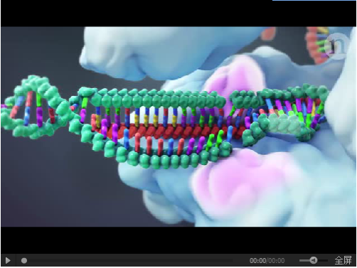 CRISPR 系统介绍