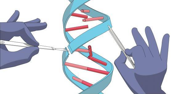 """""""CRISPR-Cas系统"""""""