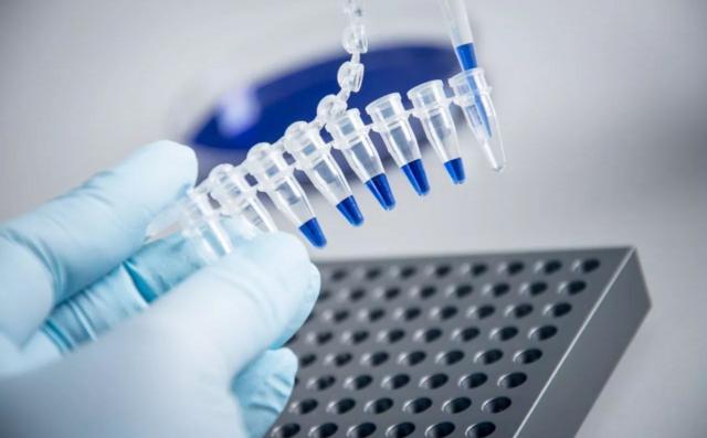 虽说同样是基因治疗,但每种病里面的学问可大着呢