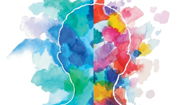 科学家成功在成体大脑中观察到干细胞分裂