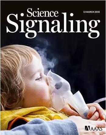 《Science Signaling》:治疗小儿哮喘患者的新靶点