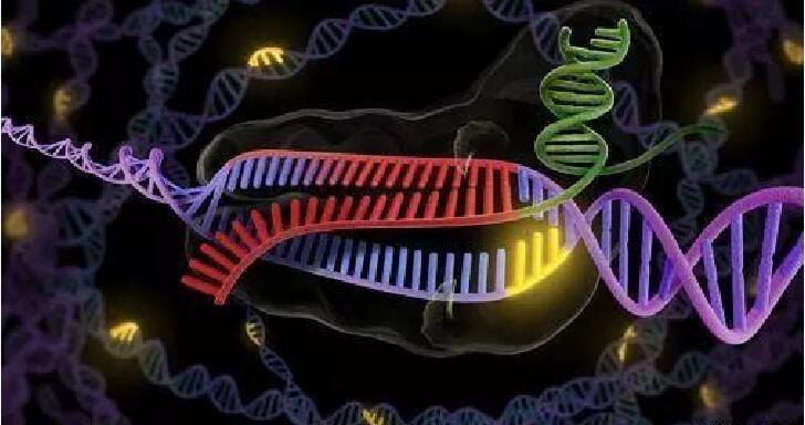 """CRISPR-Cas9"""