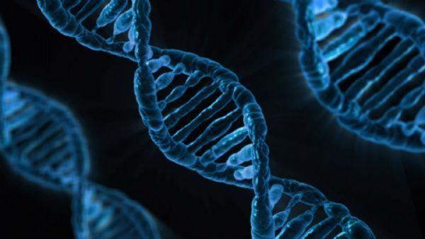CRISPR在人体内运用的五种方式