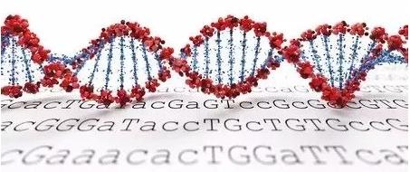 CRISPR/Cas9 技术