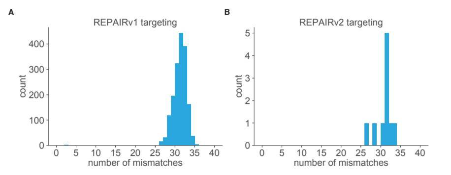 REPAIRv2能进一步减少脱靶效应