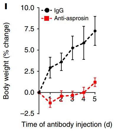 """""""注射与白素不相干的单抗的对照组小鼠(黑)和注射白素单抗小鼠(红)体重增加百分比的对比"""""""