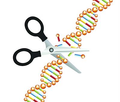 """""""基因编辑"""""""