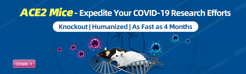 ACE2 Mice – Expedite Your COVID-19 Research Efforts