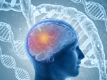 Is ApoE the key to an Alzheimer's cure