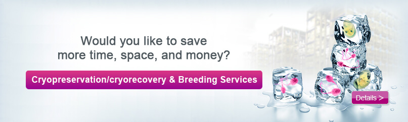 Cyagen Cryopreservation offers fast and reliable methods for archiving embryos and sperm.
