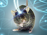 Optogenetics: Light-control of genes, pathways, and cells