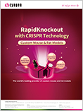RapidKnockout