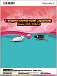 Transgenic Animal Models