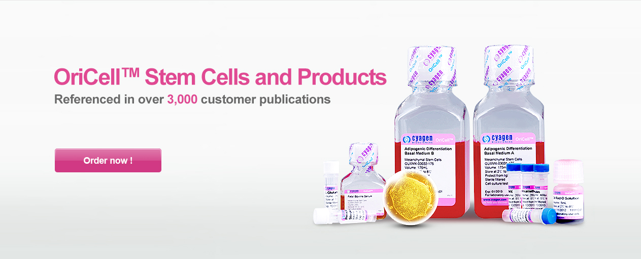 Stem Cells and Products
