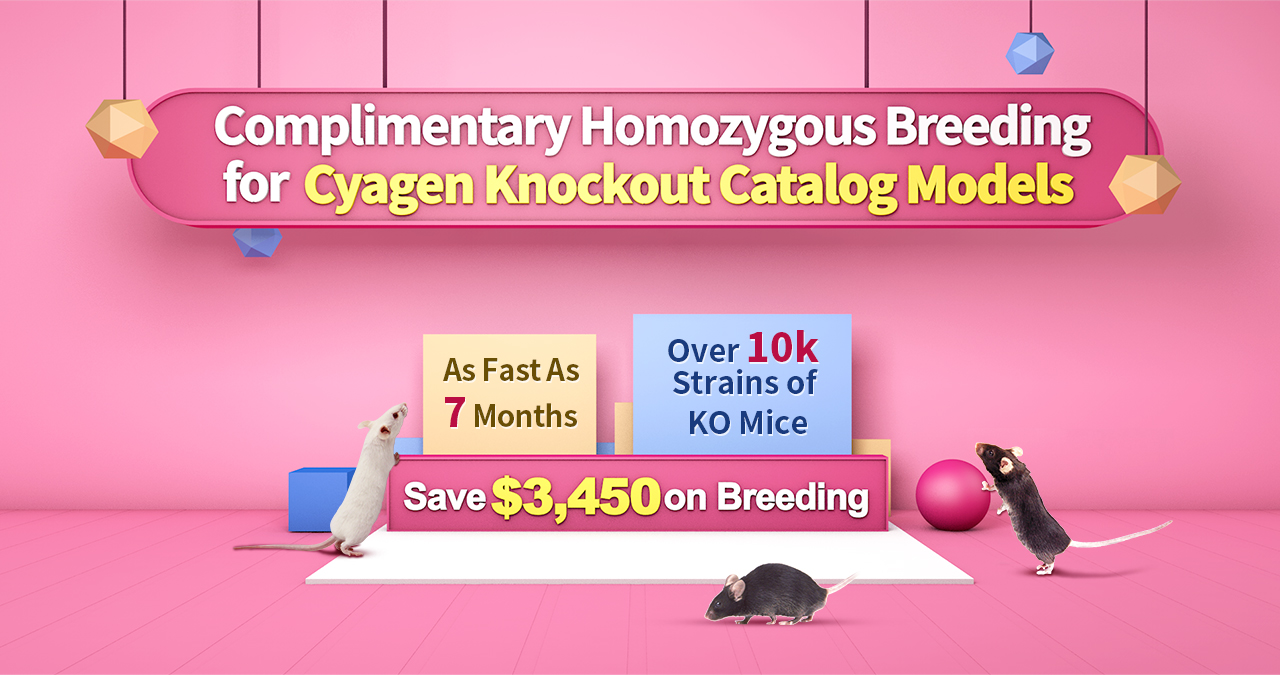 Complimentary Homozygous Breeding for Cyagen Catalog Knockout Mouse Models - Over 10k Strains of KO Mice | As Fast As 7 Months | Save $3,450 on Breeding