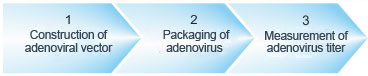workflow of adenovirus packaging services